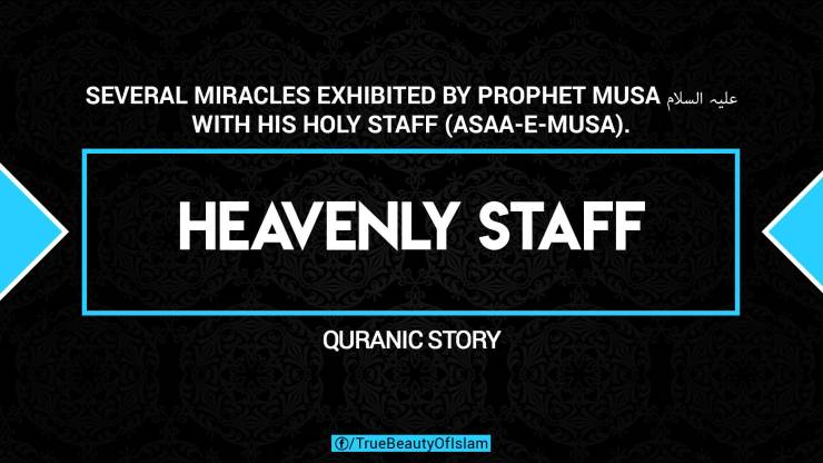 1. HEAVENLY STAFF